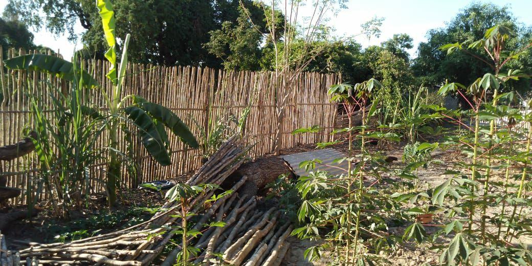 Le suore hanno eretto delle recinzioni attorno alle coltivazioni per evitare intrusioni di animali e di persone.